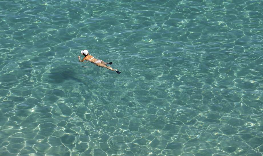Un petit plongeon, ce week-end?