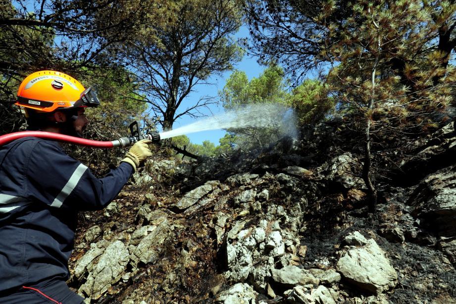 Incendie du 1er août au Faron.