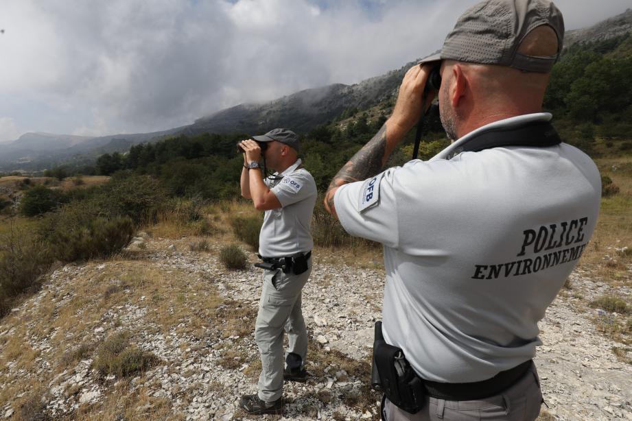Sur le plateau de Caussols, des caméras-pièges permettent aux hommes de l'Office français de la biodiversité (OFB) un suivi toute l'année des canidés
