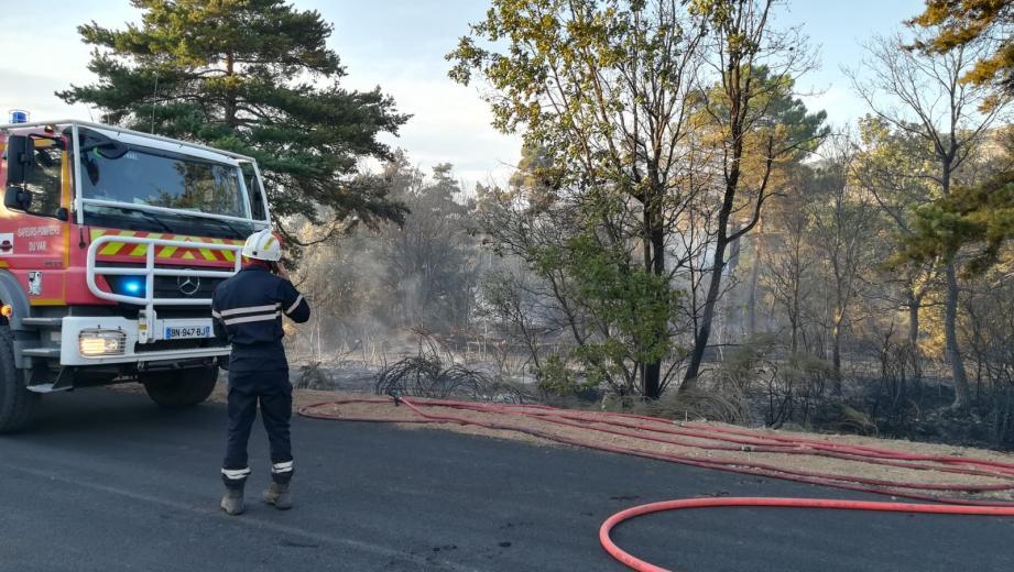 Un incendie s'est déclaré ce samedi en fin d'après-midi sur la commune de Vérignon, en bordure de la départementale 49.