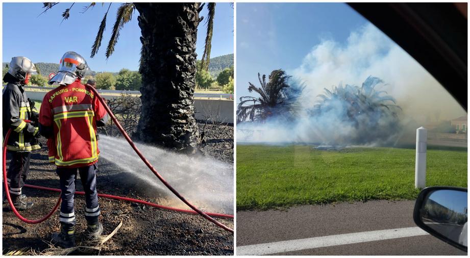 Un incendie s'est déclenché, ce mardi en fin d'après-midi, le long de l'autoroute A570 à l'entrée d'Hyères.
