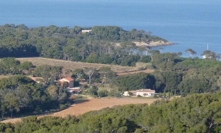 Nicolas Audebert met en avant la particularité des cépages et l'île de Porquerolles pour produire du vin blanc et du rosé de qualité.