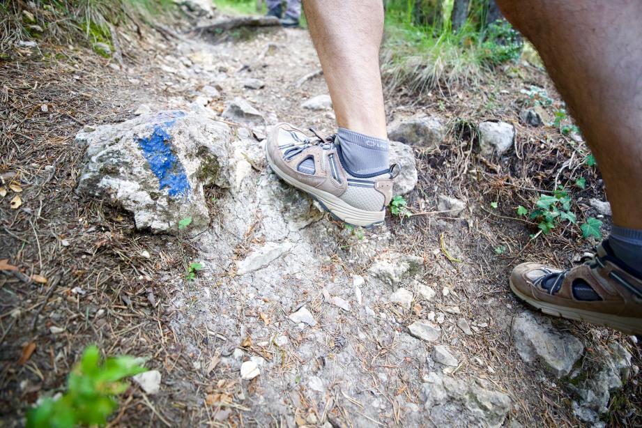 Les randonnées guidées commencent le 27 septembre en Dracénie.