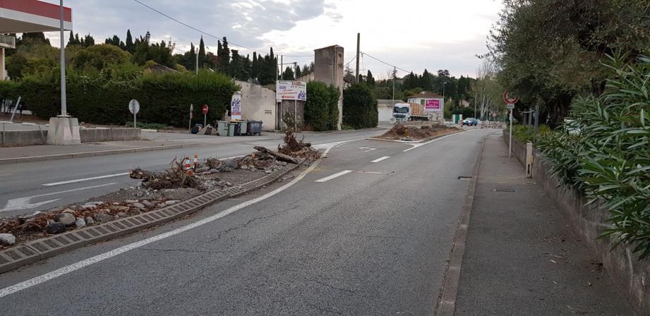 Les grands lauriers-roses, au bas de la route de Grasse, ont été gommés du paysage.