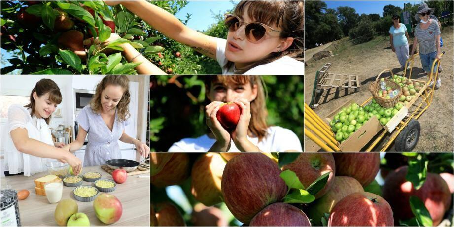 """Après la cueillette des pommes au Domaine d'Astros, on a testé de délicieuses recettes avec la blogueuse """"Sarahtatouille""""."""