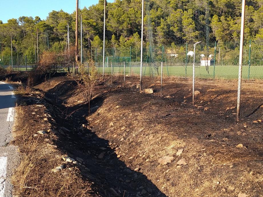 Plusieurs dizaines de mètres carrés ont brûlé, sur le bas-côté de la RD12, ainsi qu'une partie de la pelouse synthétique et un poteau électrique.