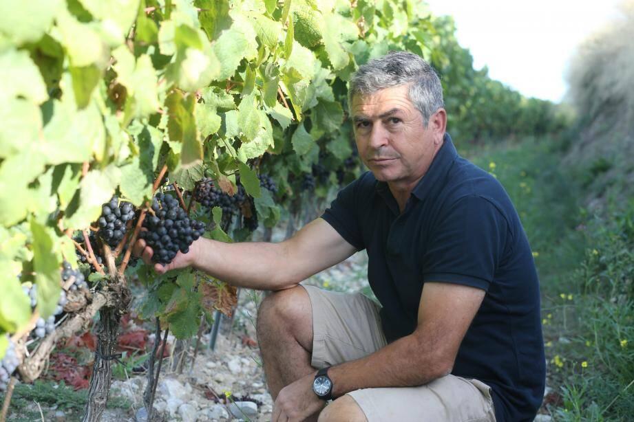 Jo Sergi, du Clos Saint-Vincent, représente les viticulteurs de Bellet qui attendent un beau millésime.