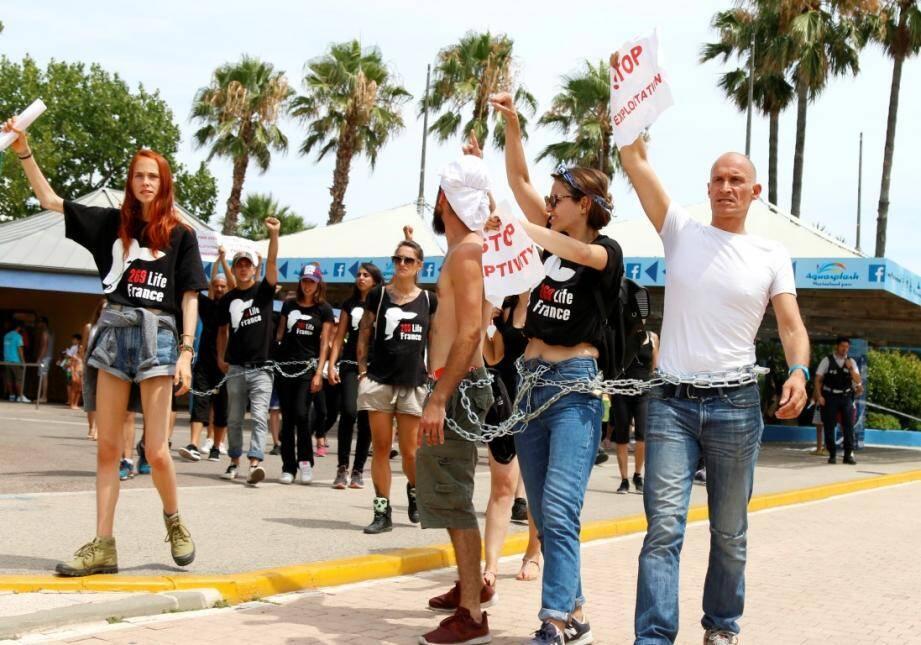 Des manifestants anti-captivité devant le parc Marineland.