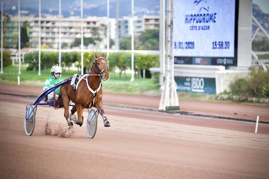 L'Hippodrome accueillera coureurs, chevaux et soignants pour servir de centre d'entraînement.