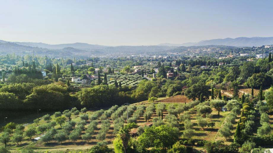 Lancôme, leader mondial de la beauté de luxe, a finalisé l'acquisition d'un domaine à Grasse, capitale mondiale du parfum.