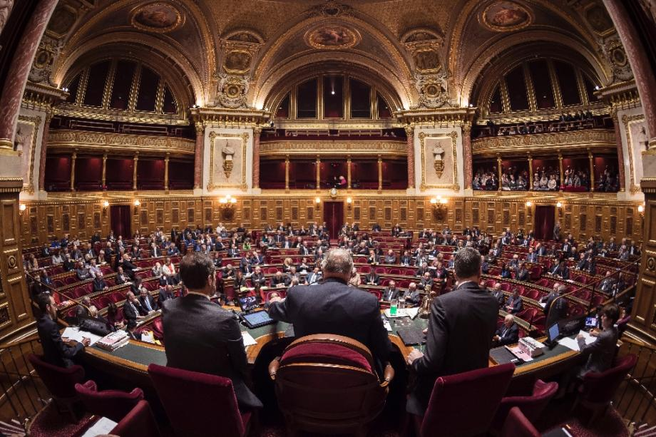 L'hémicycle du Sénat à Paris, illustration.