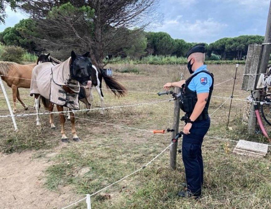 La gendarmerie a mis en place un dispositif de surveillance.