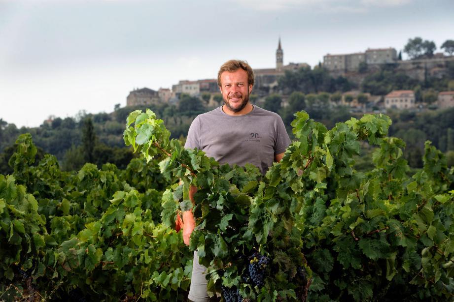 La récolte 2020 a été très belle, avec des baies d'une qualité exceptionnelle, estime Cédric Gravier, président des Vins de Bandol.