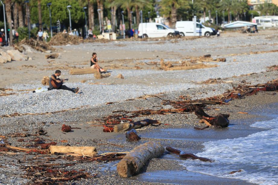 Le bois sur les plages de Cagnes-sur-Mer.