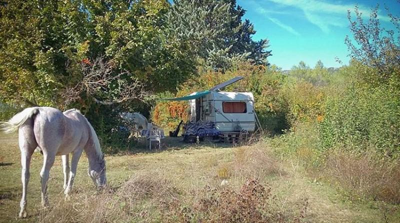 Malgré des panneaux installés depuis longtemps aux abords de leur terrain, Nathalia et William voyaient des chasseurs pénétrer dans les parcs à chevaux pour tirer les grives. Point de départ d'un conflit qui aurait pu très mal finir...