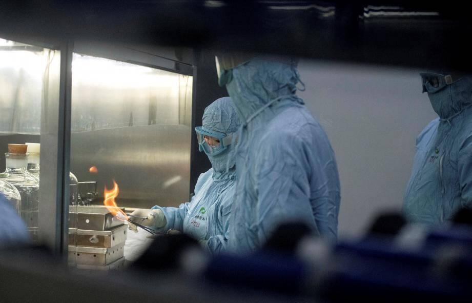 """L'OMS souhaite que soient mises en place """"un ensemble d'enquêtes longues et exhaustives"""" tant en Chine que dans d'autres pays pour essayer de déterminer l'origine du virus."""