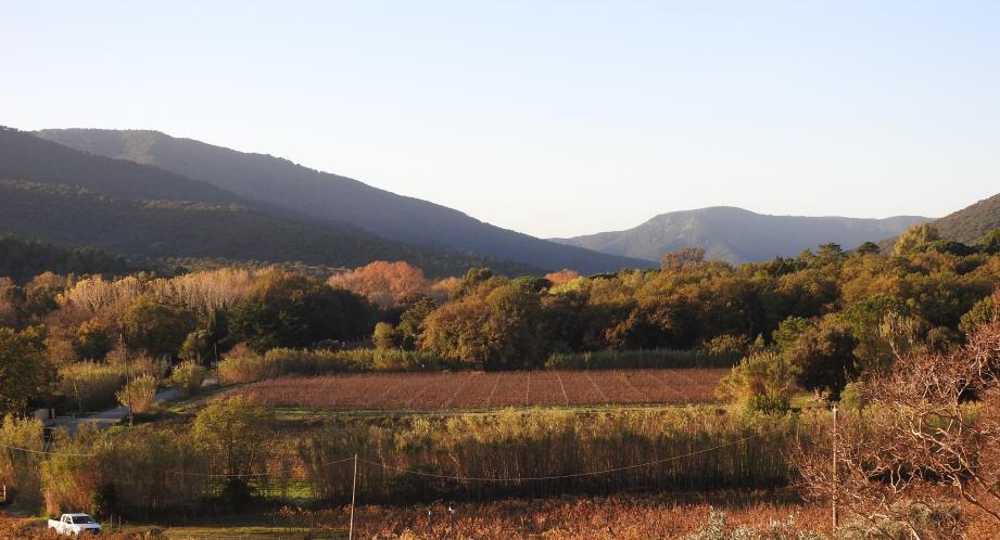 Voilà la vue, imprenable, qu'une des propriétés voisines aura sur le site bordé (à gauche) par la route départementale.