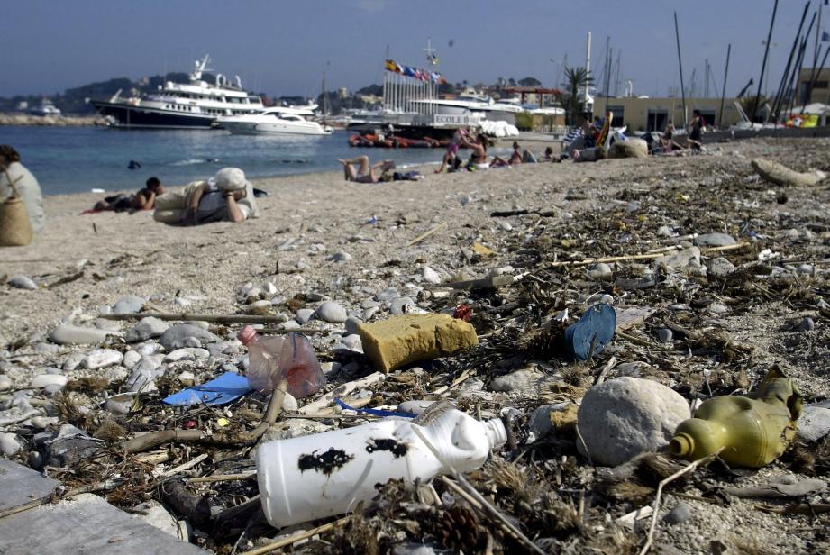 730 tonnes de plastique rejoignent la Méditerranée chaque jour. Une pollution qui menace la biodiversité.
