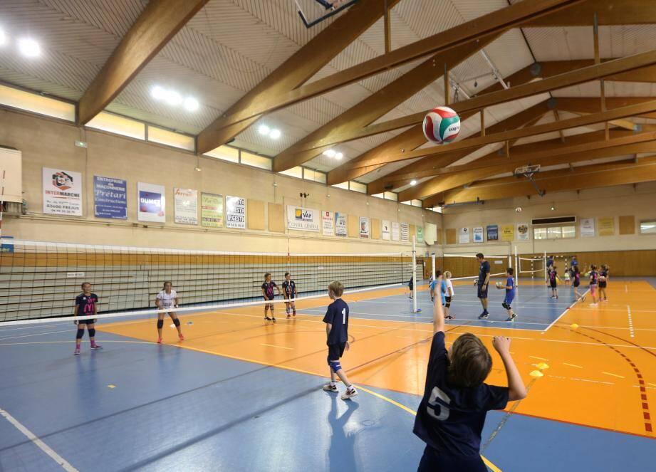 Les jeunes volleyeurs ne reprendront pas le chemin de l'entraînement avant la mi-décembre.