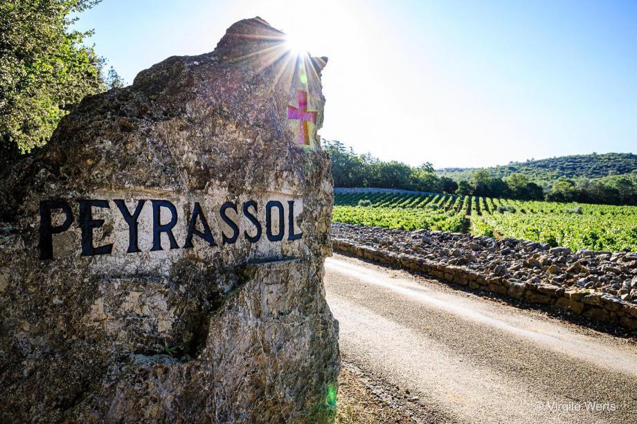 Le domaine de Peyrassol a versé 250 hectolitres (soit 25 tonnes) de son rosé de saison dans un flexitank contener pour rejoindre par bateau les Etats-Unis, avant d'y être embouteillé.