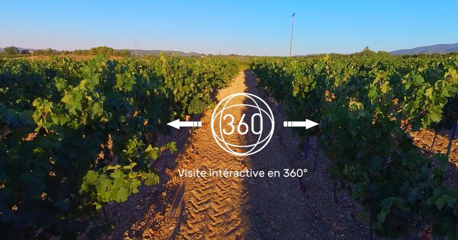 Dans le Var, plusieurs domaines viticoles dont Château Sainte-Roseline se sont déjà montrés intéressés par cette approche originale.