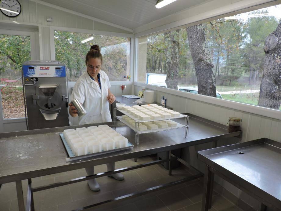 Laure dans son laboratoire prépare les fromages et bientôt les bûches glacées.