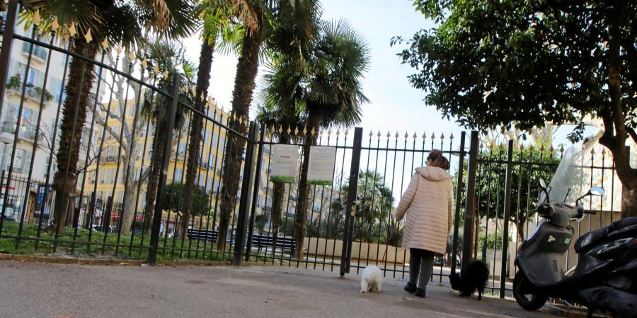 Nice Dans Le Top 5 Des Villes Amies Des Chiens Selon Le Classement De 30 Millions D Amis Nice Matin