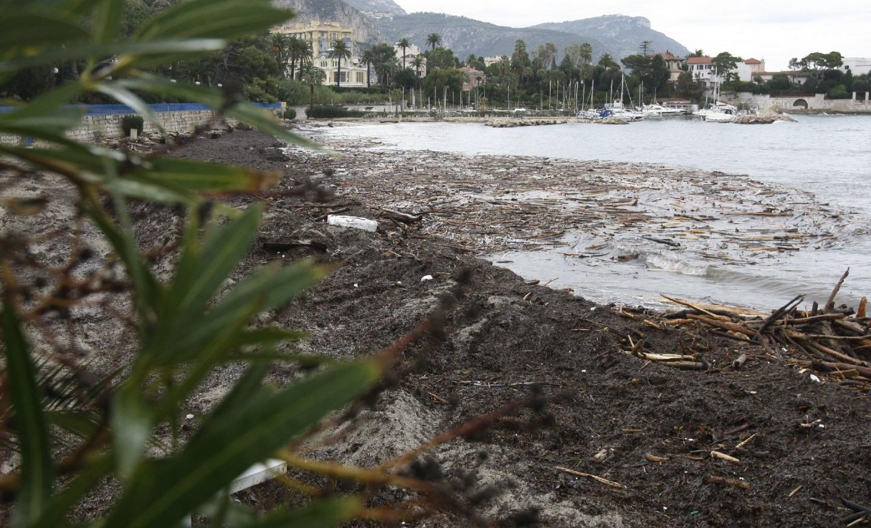 A Beaulieu, la Baie des Fourmis a été envahie par des tonnes d'arbres arrachés, de déchets et d'algues.