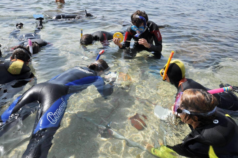 En fin de session, une initiation à l'archéologie sous-marine est proposée dans les conditions du réel. Bon, certes, la profondeur en moins...