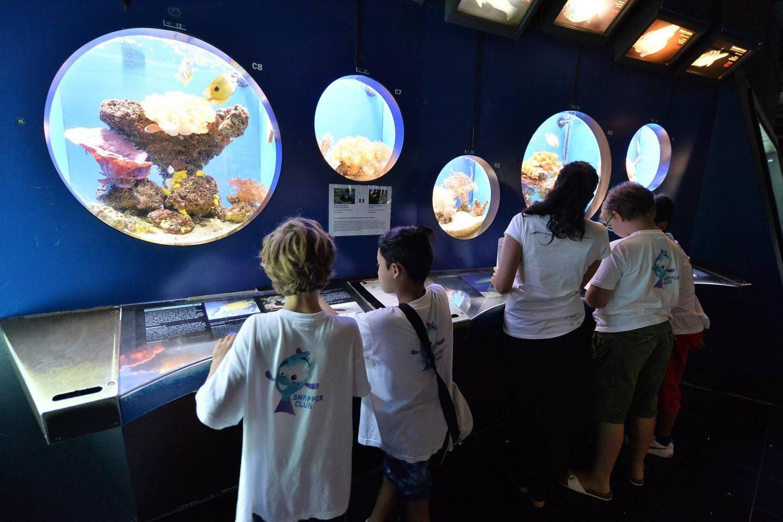 Au musée océanographique de Monaco
