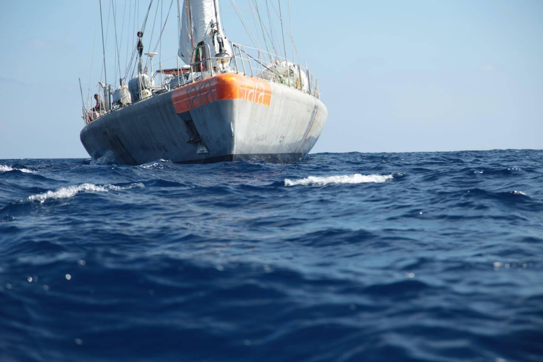 L'expédition Tara Méditerranée a analysé la pollution plastique