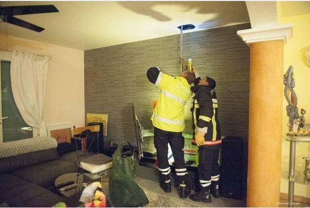Les pompiers ont réussi à décoincer le rapace et à lui rendre sa liberté.