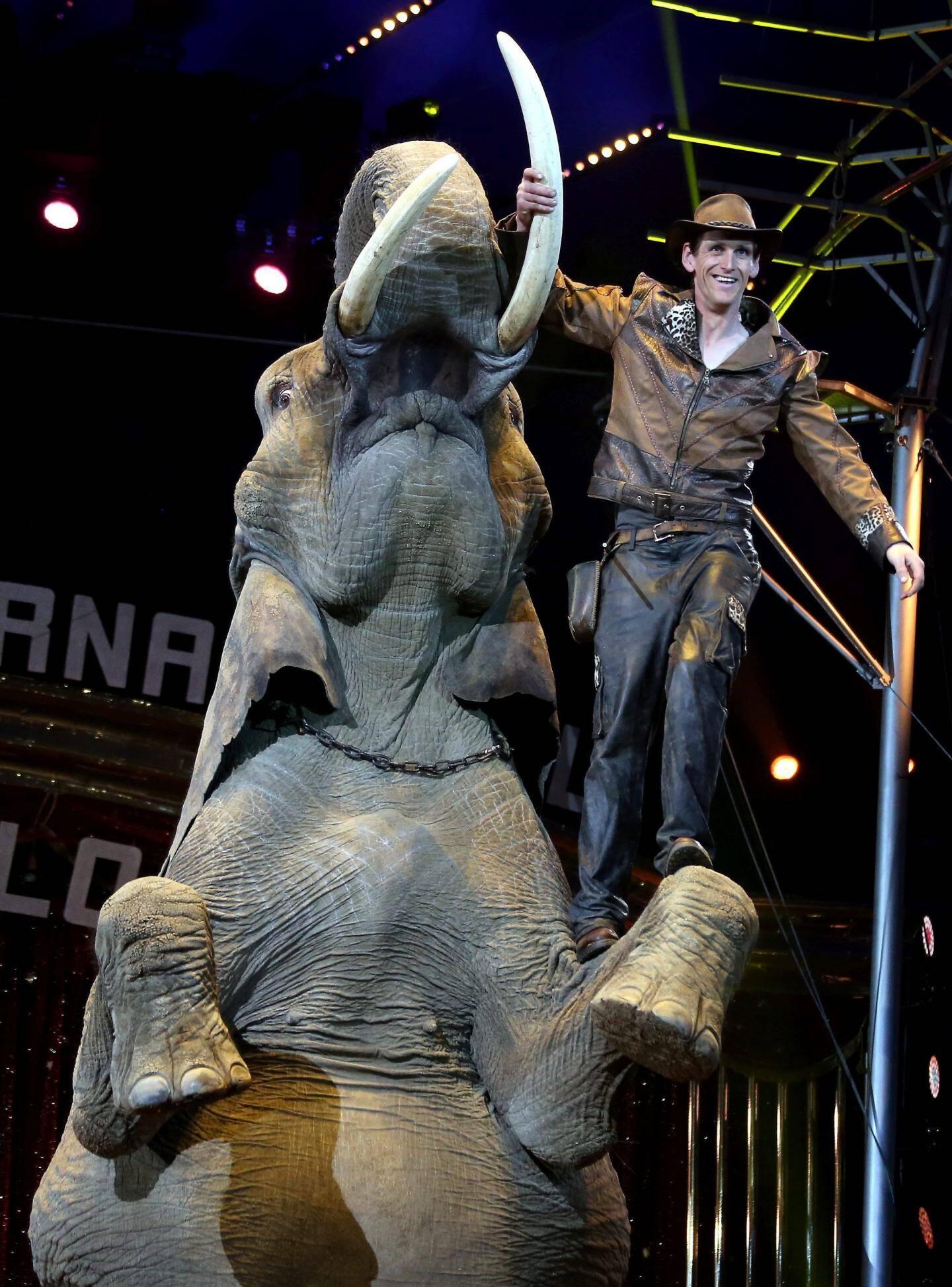 Le sympathique Erwin Frankello propose le numéro de dressage le plus réussi du festival.