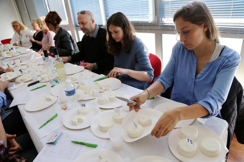 Quarante-six échantillons ont été testés lors du Concours des fromages de chèvre.