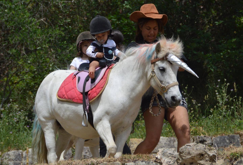 Il avait poussé une belle corne sur la tête des poneys !