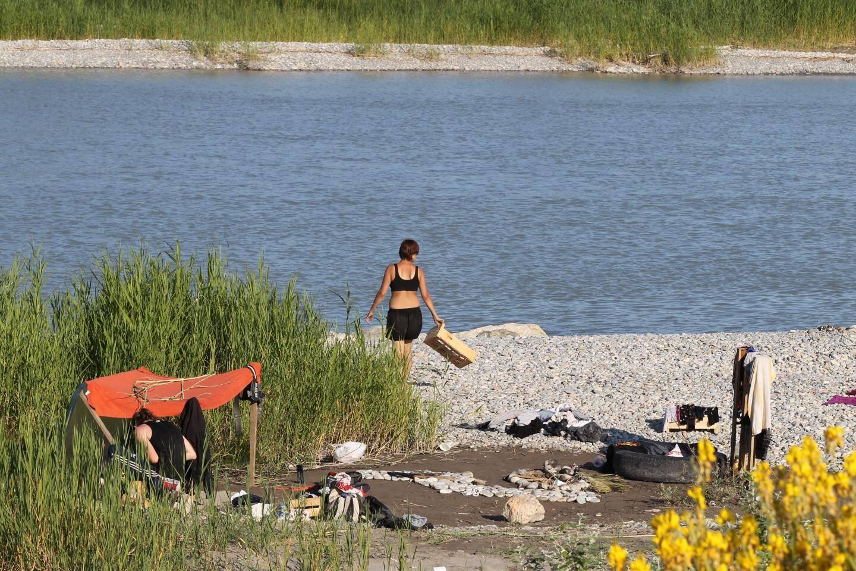 La parcelle de plage, interdite d'accès, est continuellement fréquentée par des personnes qui, au mieux, laissent un tas de détritus ou, au pire, s'attaquent à la faune sauvage.