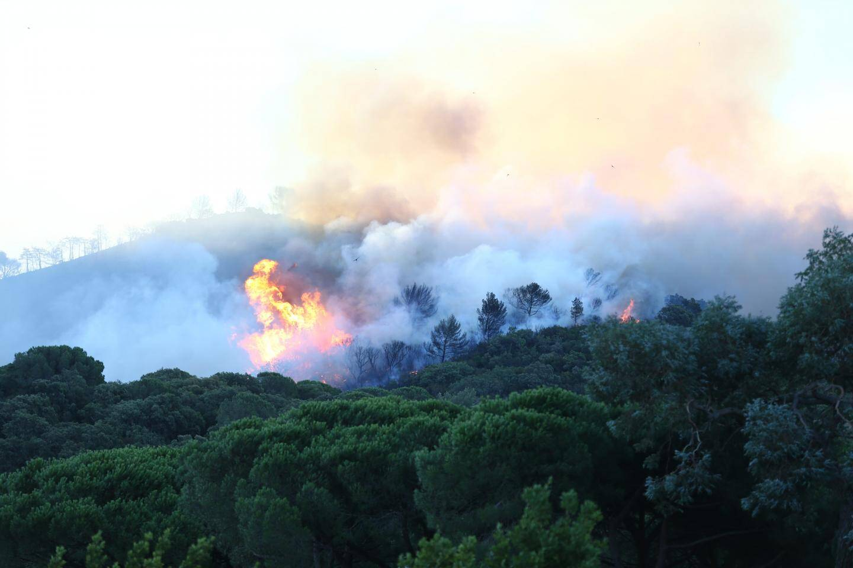 L'incendie à Gigaro, à La Croix Valmer, ce mardi matin.
