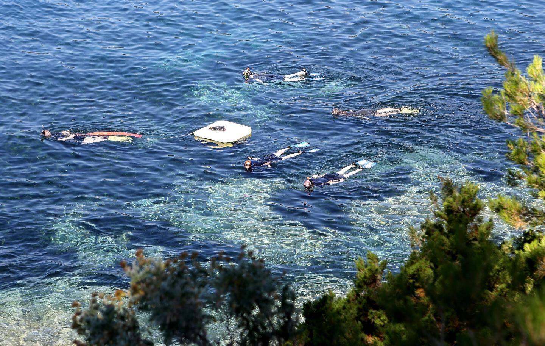 Une randonnée subaquatique en groupe sur le domaine du Rayol.
