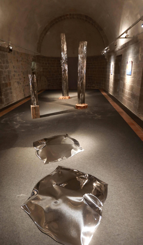 Flaques et troncs reflètent la lumière.