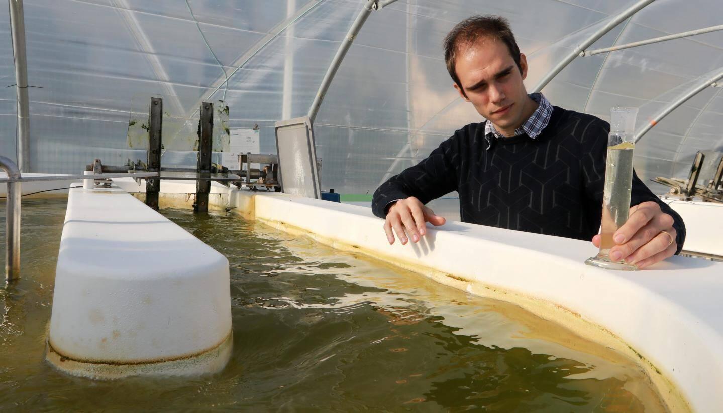 A Villefranche sur mer, Hubert Bonnefond, co-fondateur d'Inalve, la start-up  qui veut nourrir les animaux avec les microalgues.