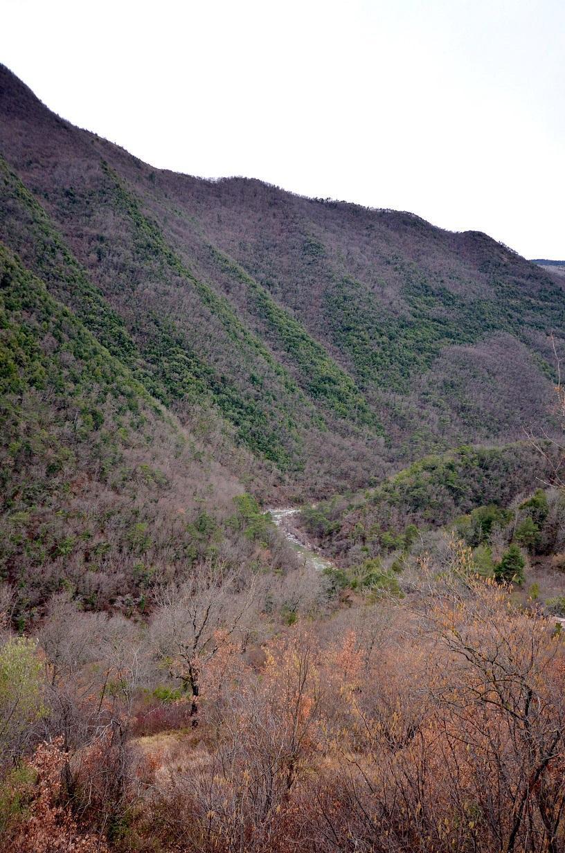 Blottie entre deux montagnes, la rivière Estéron savoure l'hiver.
