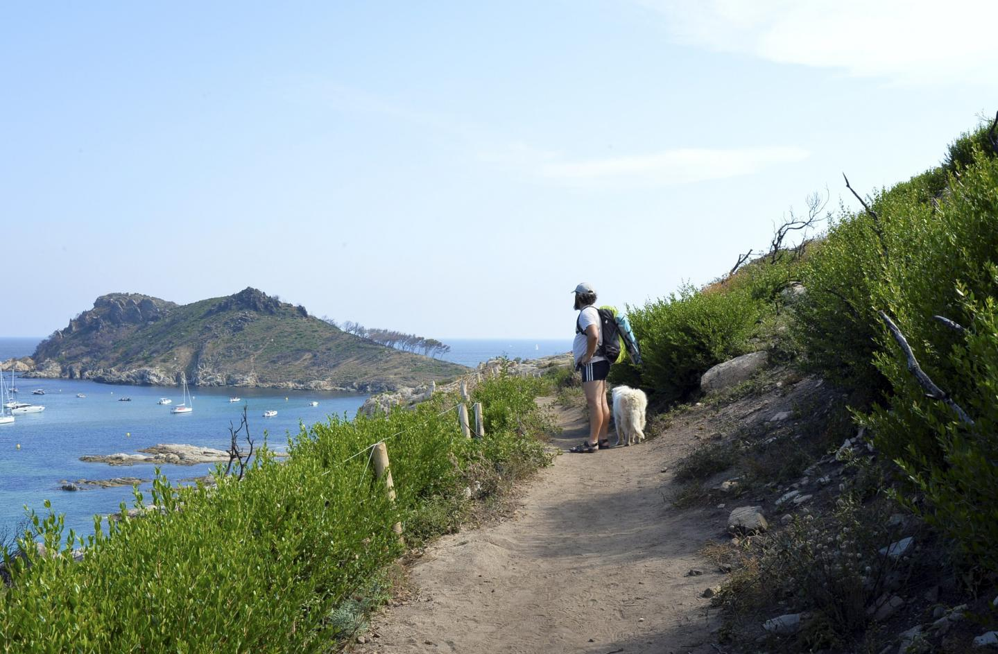 Au Cap Taillat aussi, la nature reprend ses droits.