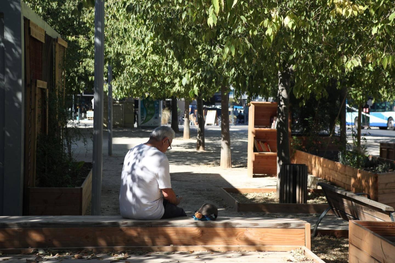 """Une """"bibliothèque libre"""" a été installée à l'entrée de la place."""