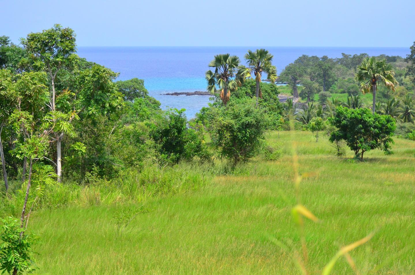 Sao Tomé-et-Principe: bienvenue aux îles chocolat!