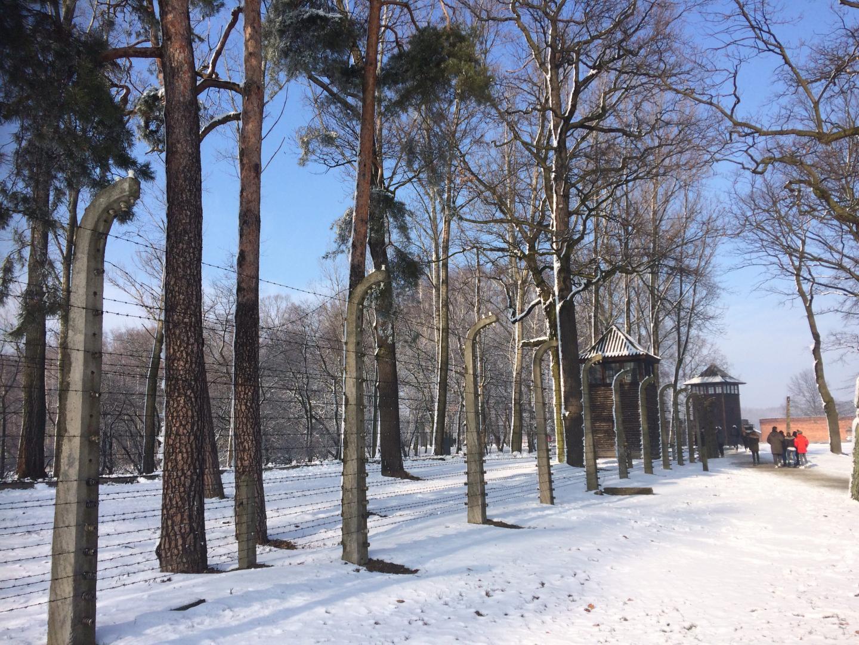 A gauche, les miradors de Birkenau. A droite, le tristement célèbre portique au cynisme atroce « le travail rend libre » qui ouvre le camp d'Auschwitz.