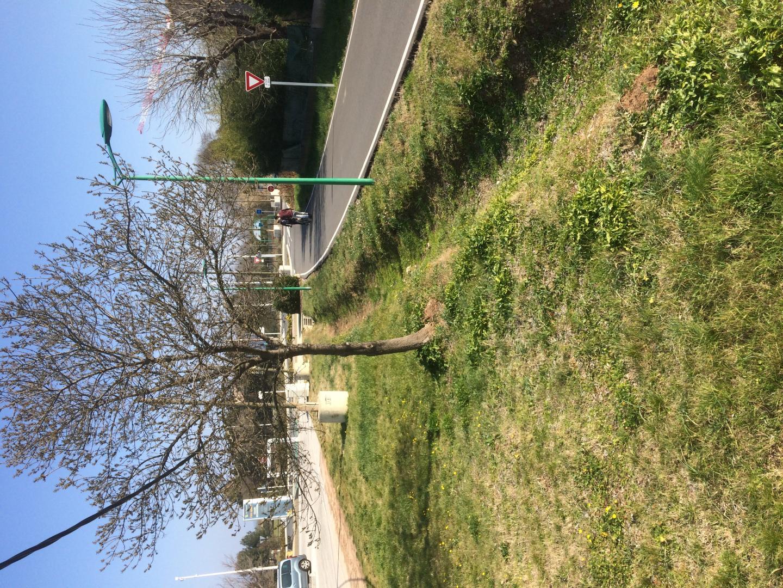 Le parc de « street work out » va prendre place dans les deux prochains mois en bord de piste cyclable. (photo P-H.C.)