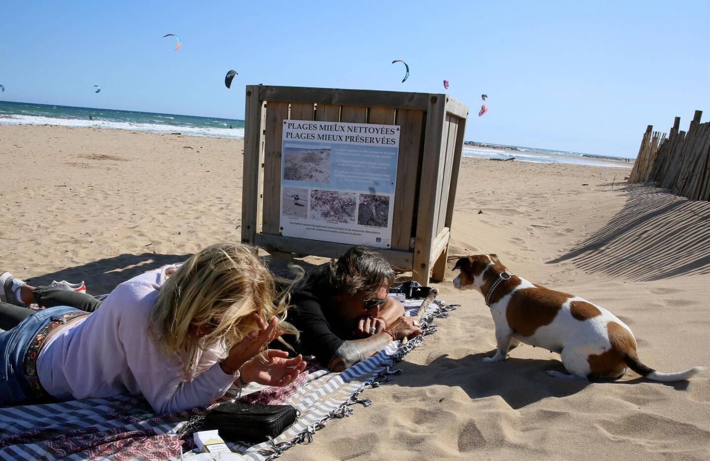 Grâce aux bacs à marée, une plage mieux nettoyée est une plage mieux préservée.