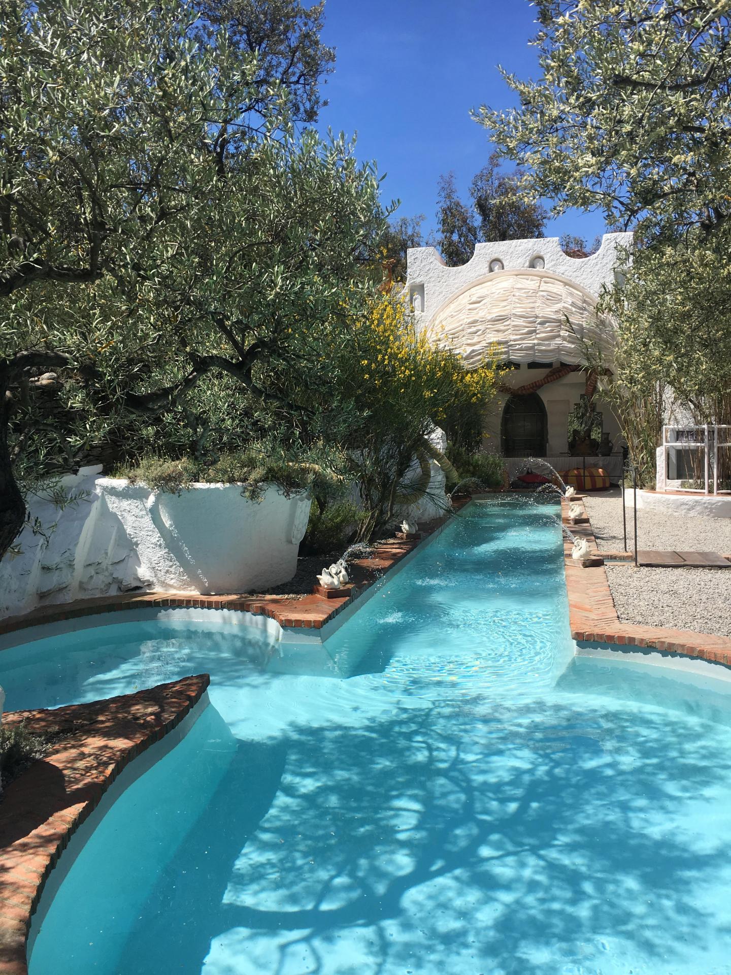 La piscine nichée dans une oliveraie.