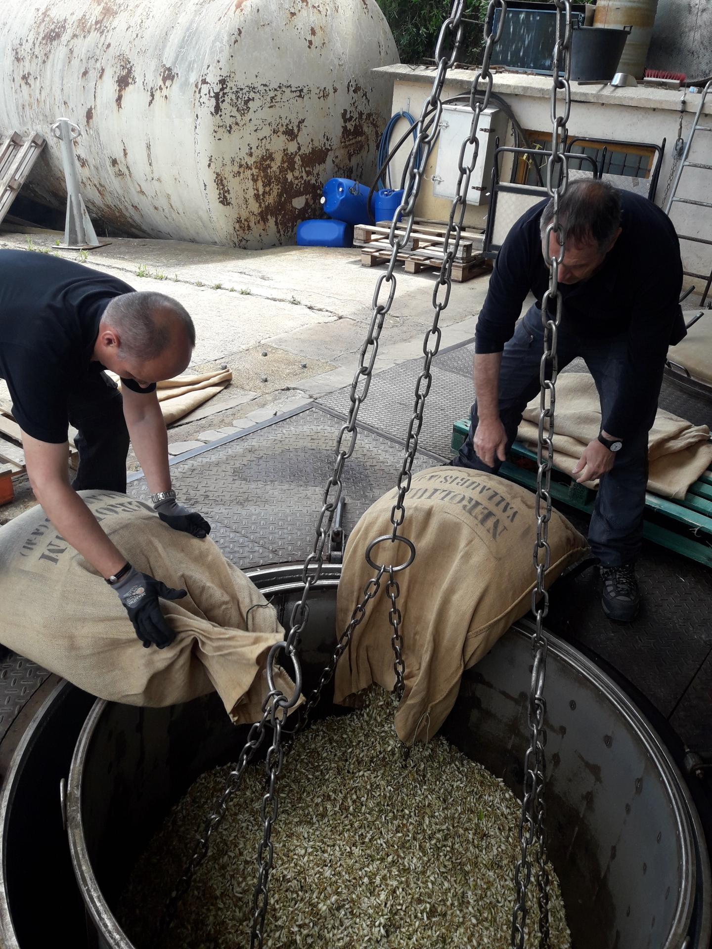 Les six sacs en toile de jute, estampillés Nérolium, sont ouverts par les employés du site d'extraction-distillation Sotraflor de la famille Mul.