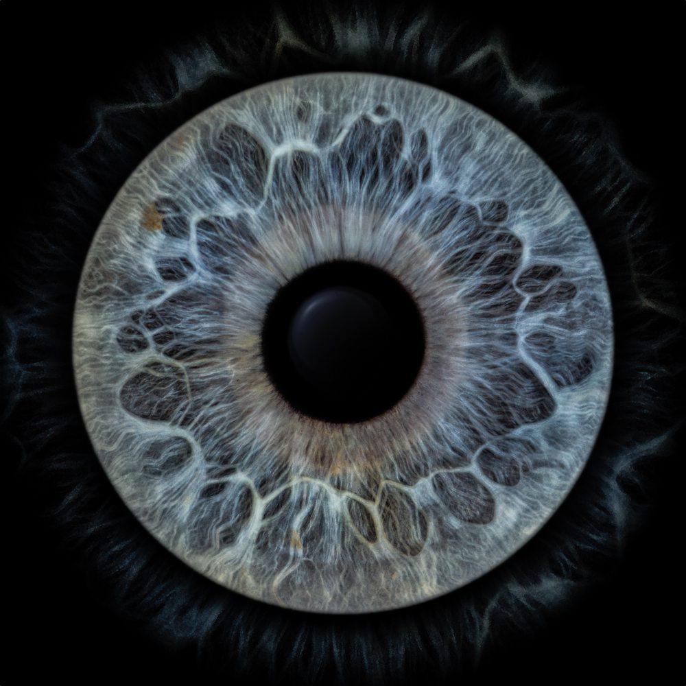 Chaque iris est unique, y compris chez la même personne. Les deux iris ne se ressemblent jamais parfaitement.